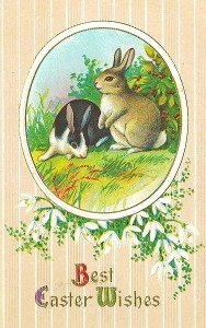 The easter bunny began life as The German Hare - a symbol of fertility. Hare hunting was once a popular Easter pastime in parts of rural England. Image by ItsLassieTime