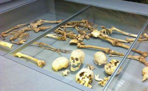 Skeletons discovered in Dorset. Image: Frances Spiegel with permission from the British Museum.